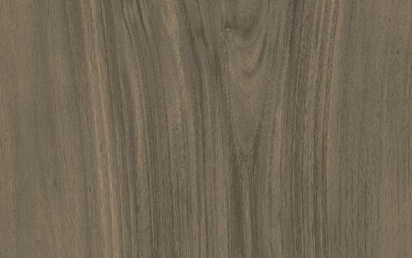 Fine Textured Forest Lignum Fine Textured Texture